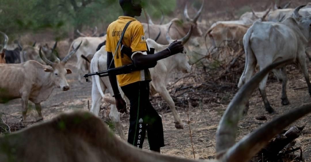 Miyetti Allah Backs Obiano Order Declaring AK-47-Carrying Herdsmen Criminals