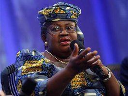 Okonjo-Iweala Meets 164 Delegates As She Resumes As WTO DG
