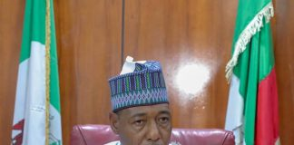 Mambilla Power Project Only Exists On Paper – Northeast Govs