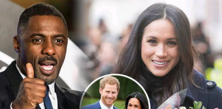 You Can't Take Someone's Voice Away - Idris Elba Supports Meghan Markle