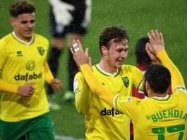 Norwich City Promoted To Premier League