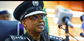 IGP: We're Working To Ensure Nigerians Can Sleep With Two Eyes Closed