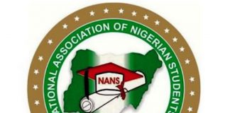 Declare Bandits As Terrorists, NANS Tell Buhari