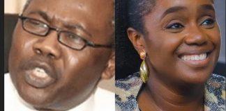 NYSC Scandal: Kemi Adeosun Not A Nigerian – Adoke