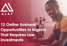 12 Online Business Opportunities in Nigeria That Requires Low Investments